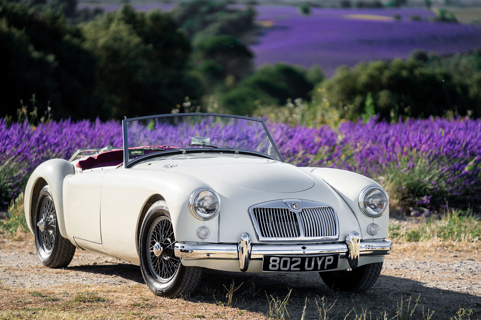 A front view of the Provence Classics 1958 MGA in the countryside of Provence, France.